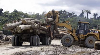 Sarawak Malysia Holz
